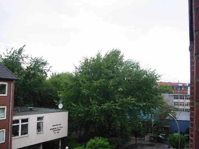 Unter Den Bumen Fhrt Ein Fussgngerweg Durch Die Historische Peterstrasse Zum Park Wallanlagen Ganz Rechts Schule Jan Valkenburg Strasse Und Dahinter